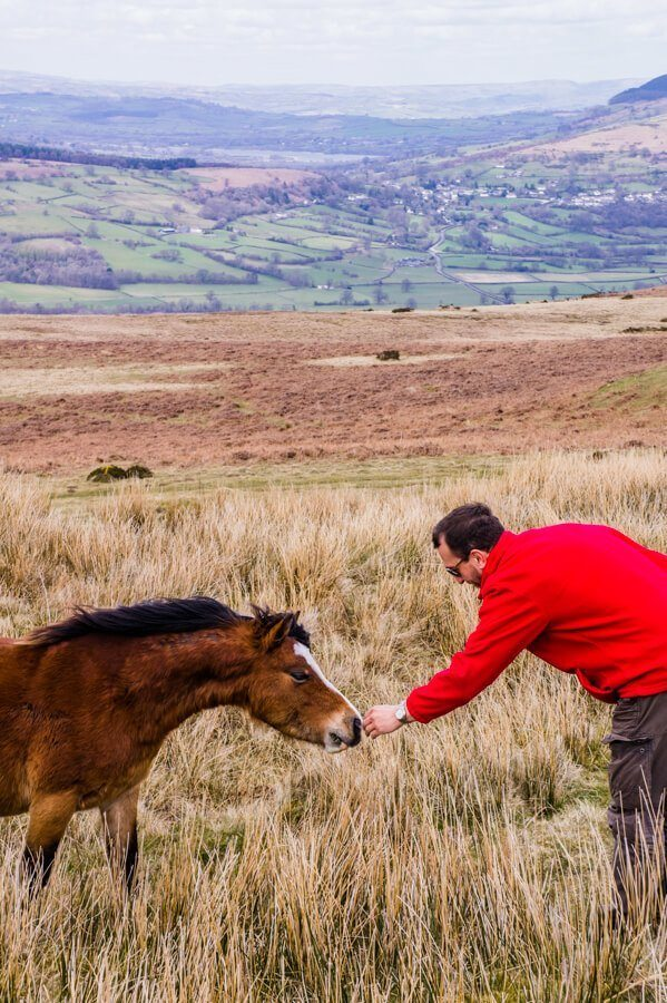 Brecon Beacons Nationaal Park: Pracht & Praal uit de IJstijd in Zuid-Wales (Leuke Dag Trip vanaf Cardiff) || The London Tester