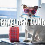 6 Vliegvelden Londen: Welke is het Beste naar het Centrum?